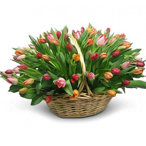 Корзина с тюльпанами 65 штук