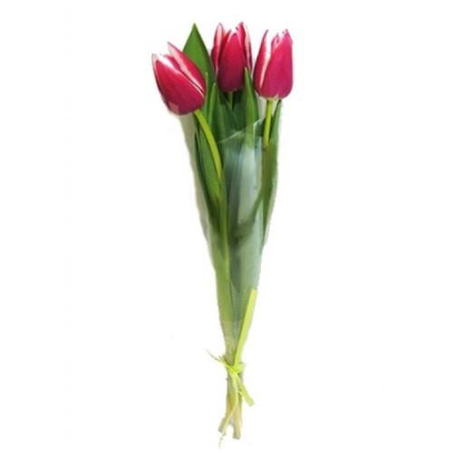 Букет из 3 тюльпанов в слюде